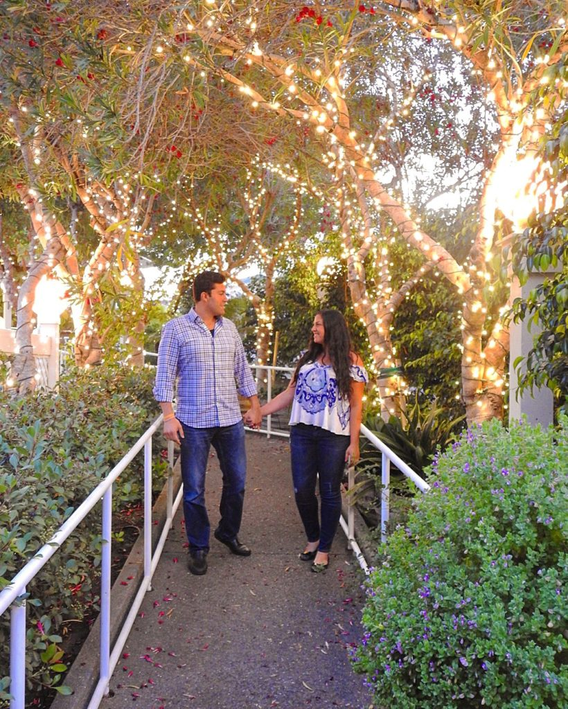 twinkly lights apple farm inn