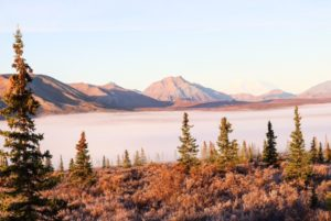 6 Reasons We Loved The Denali Backcountry Adventure