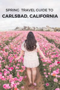 Spring travel guide to Carlsbad, California. Things to do, where to eat, where to stay