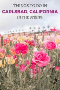 Things to do in Carlsbad, California in the spring