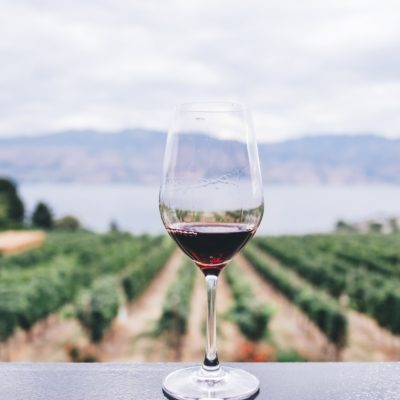 Best Wineries in Temecula & Other Things to Do in Temecula
