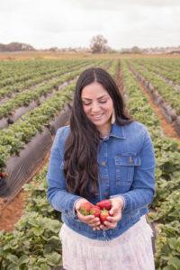 Strawberry picking and strawberry fields