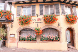 One of the many pretty and charming buildings in the cute town of Colmar, France in the Alsace region. Covered in flowers!