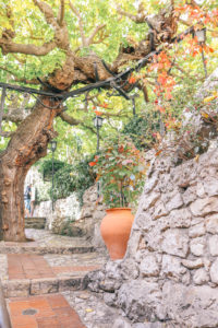 Things to do in Eze, France