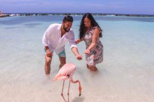 Flamingo Beach in Renaissance Island