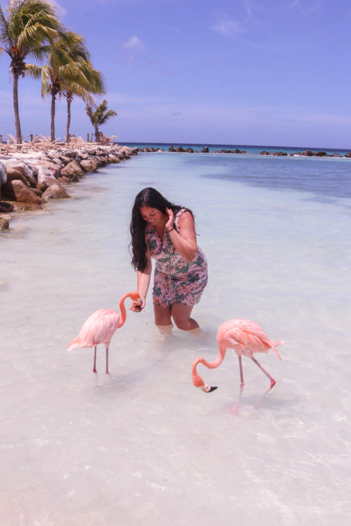 Romantic things to do on Aruba honeymoon or romantic getaway: Flamingo Beach