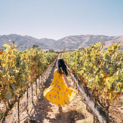 The Ultimate Buellton California Weekend Getaway Itinerary