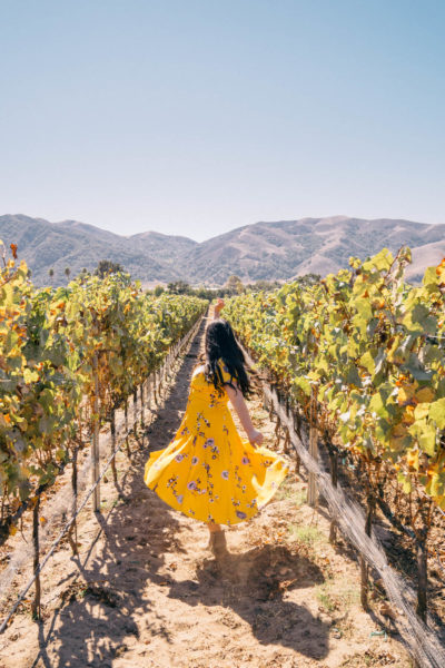 The Ultimate Buellton California Weekend Getaway Itinerary