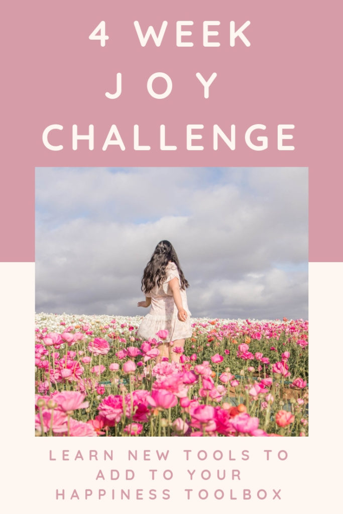 four week joy challenge to learn new tools to add to your happiness toolbox
