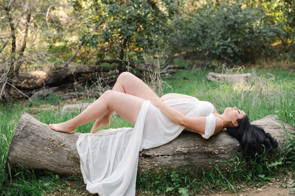 image of a pregnant woman laying on a log wearing a white sheer dress surrounded by greenery to give the vibe of holistic pregnancy books
